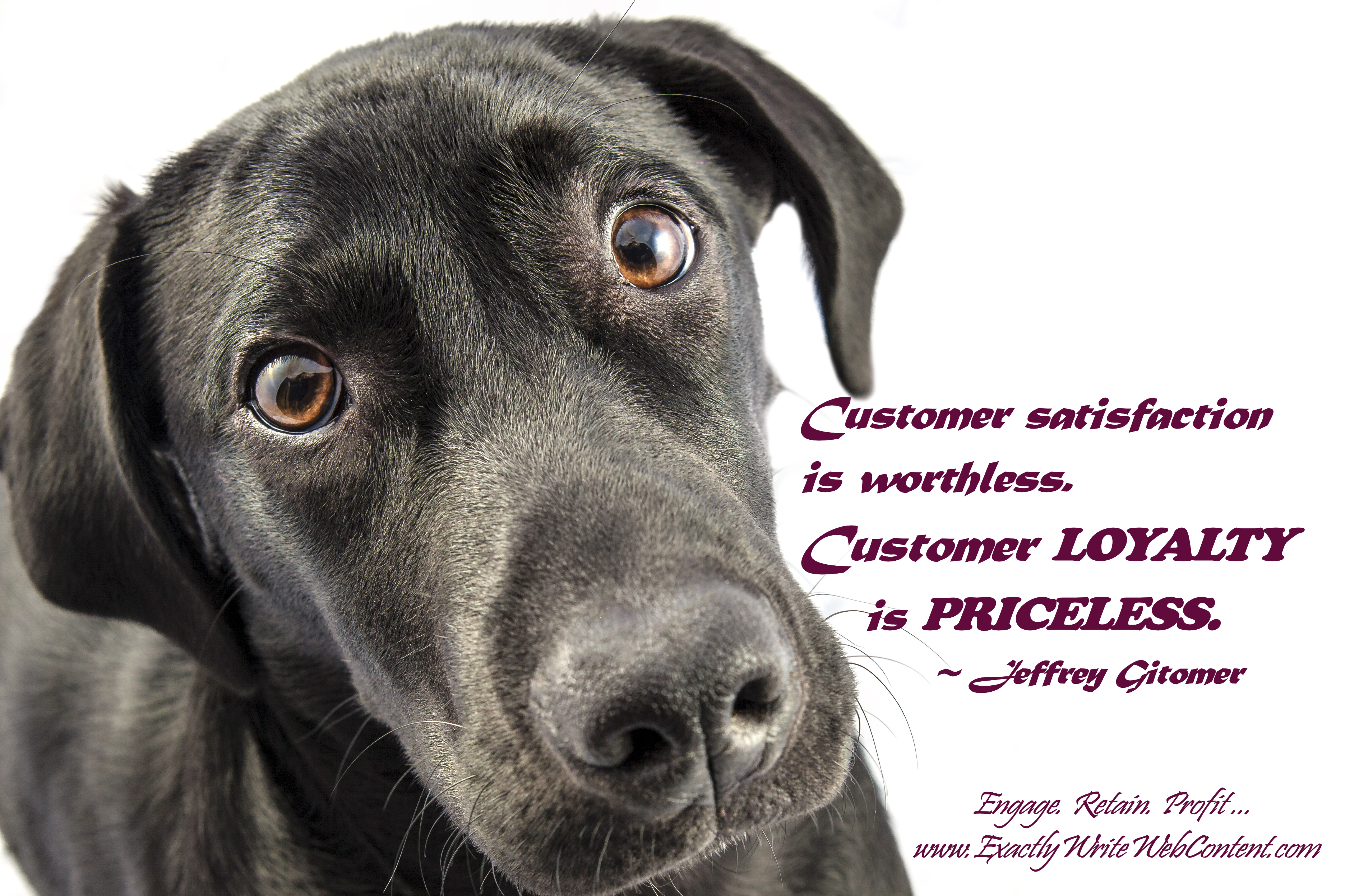 Customer Loyalty is Priceless